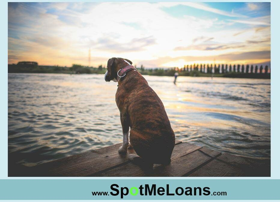 Beat End of Summer Blues — Bad Credit Loans